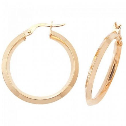 Just Gold Earrings -9Ct Earrings, ER874